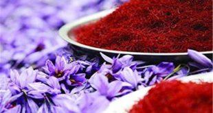 فروش زعفران تربت حیدریه