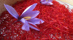 فروش عمده زعفران حمید